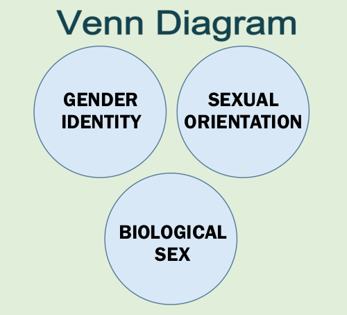 Sex, Gender & Sexual Orientation – What's the Difference?