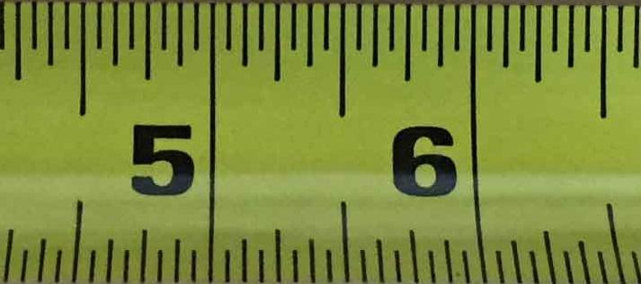 average size penis