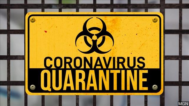 sissy Coronavirus COVID-19 Mistress Daphne 1-800-601-6975