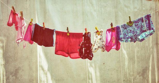 panties Mistress Daphne 1-800-601-6975